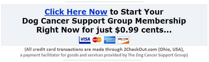 Click here to join the Dog Cancer Support Group for Just $0.99 cents